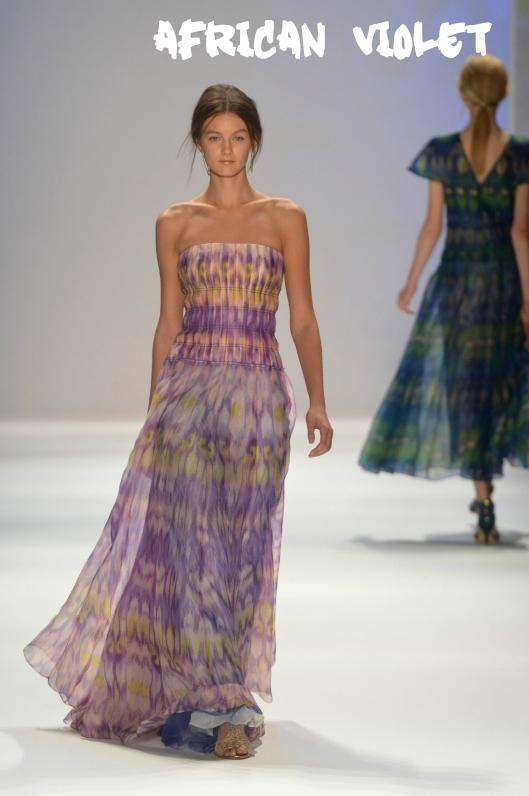 spring-african-violet-030813-1363302055a